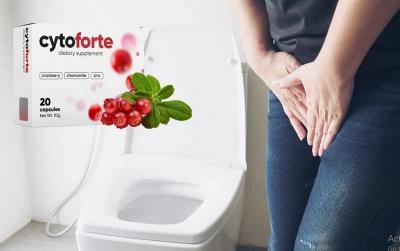 Cyto-Forte-pastile-cistita-cronica-prospect-ingrediente